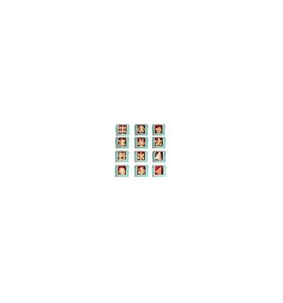 12Pcs Beech Kong Ming Lock Puzzle Luban Lock Set Educational Toy