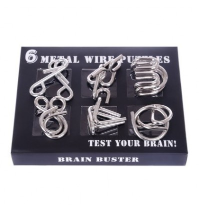 6Pcs Metal Puzzle IQ Brain Teaser Set for Children Adults MT6899
